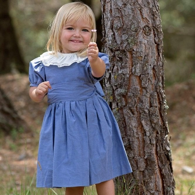 AliOli Kids Puff Sleeved Blue Dress